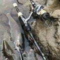 コバちゃんさんの岐阜県郡上市での釣果写真