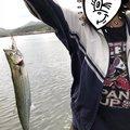 まあやごんさんの佐賀県伊万里市での釣果写真