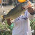 辻田浩紀さんの大阪府松原市での釣果写真