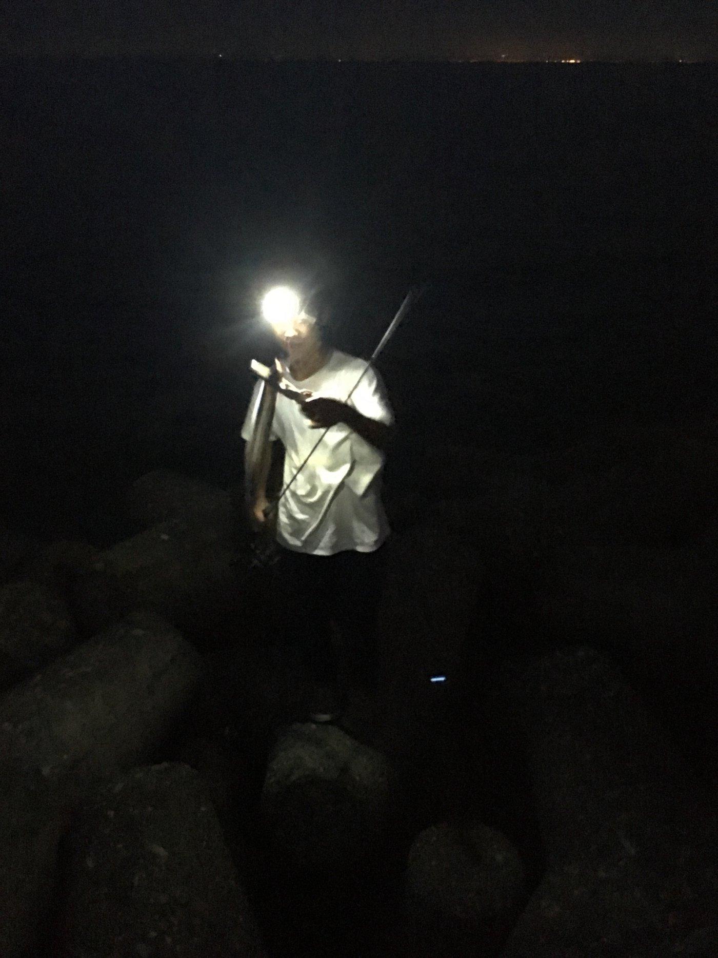 魚狩りさんの投稿画像,写っている魚はタチウオ