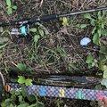 ラテス81さんの大分県宇佐市での釣果写真