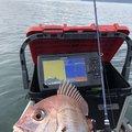 だいさんの鹿児島県姶良市での釣果写真