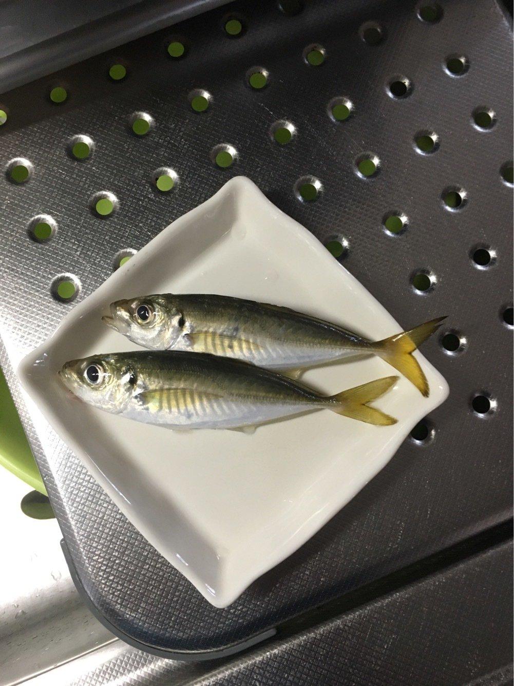 リョウガップルさんの投稿画像,写っている魚はアジ