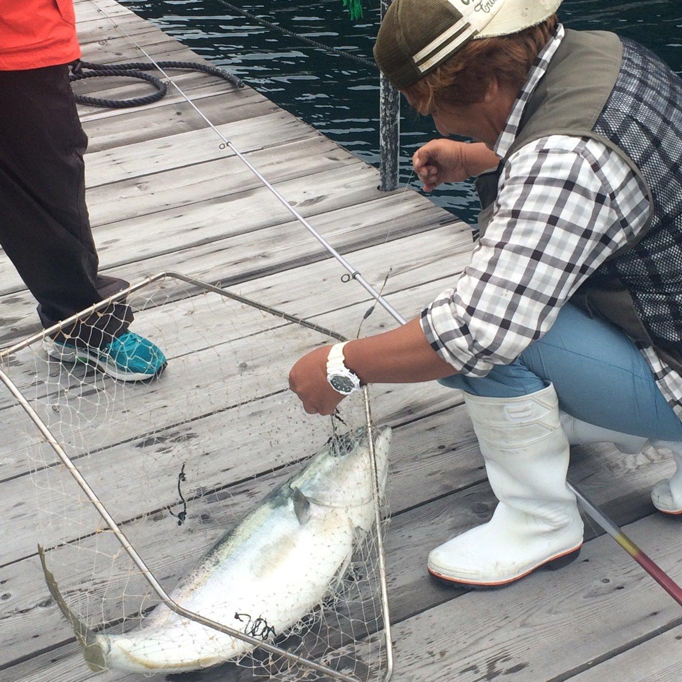 ほとでんせつさんの投稿画像,写っている魚はブリ