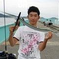 タッシーさんの福岡県福津市でのダツの釣果写真