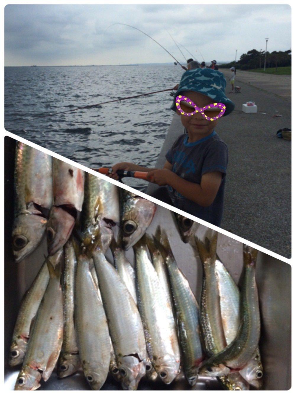 ヤスさんの投稿画像,写っている魚はサッパ