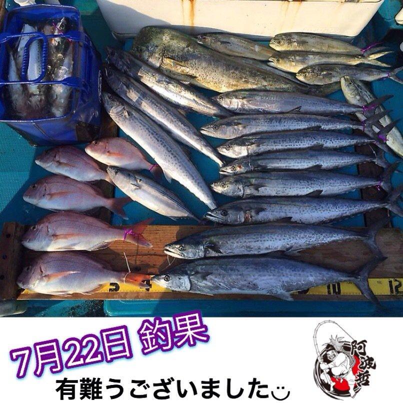 阿波哲さんの投稿画像,写っている魚はサワラ