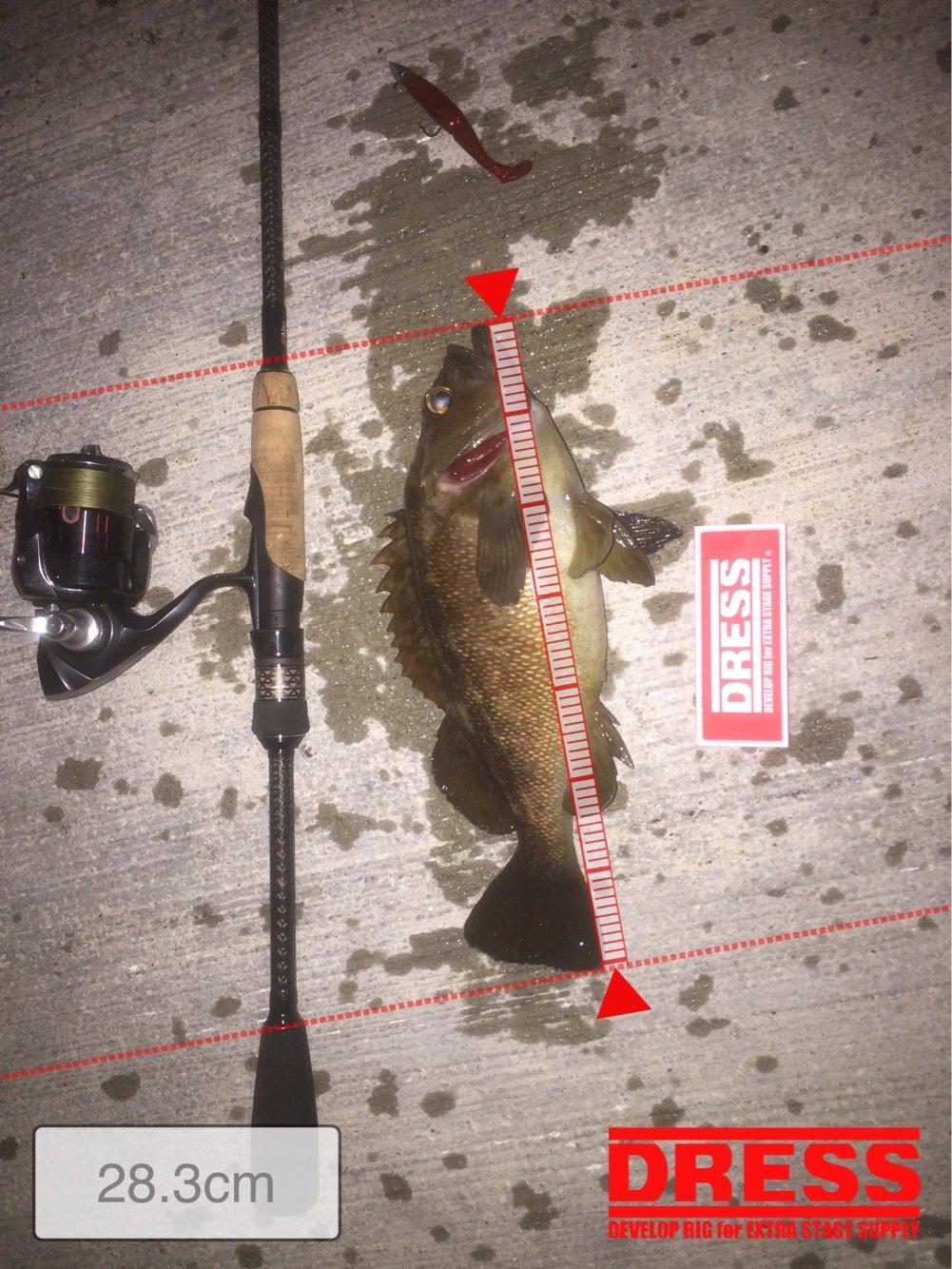 お尚さんさんの投稿画像,写っている魚はエゾメバル