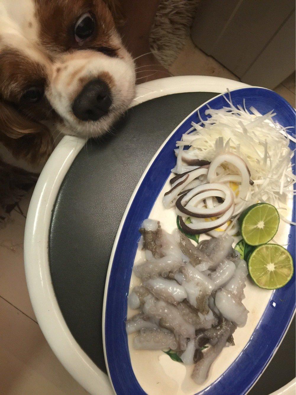 はにおさんの投稿画像,写っている魚はマダコ