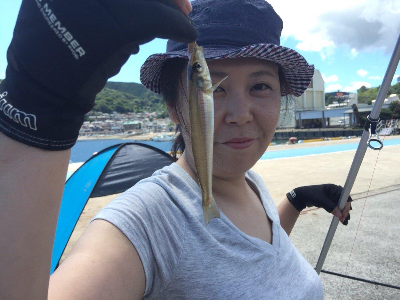 はにこさんの投稿画像,写っている魚はシロギス