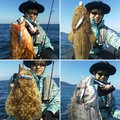 ミヤモトミチヒコさんの福岡県福岡市でのクロダイの釣果写真
