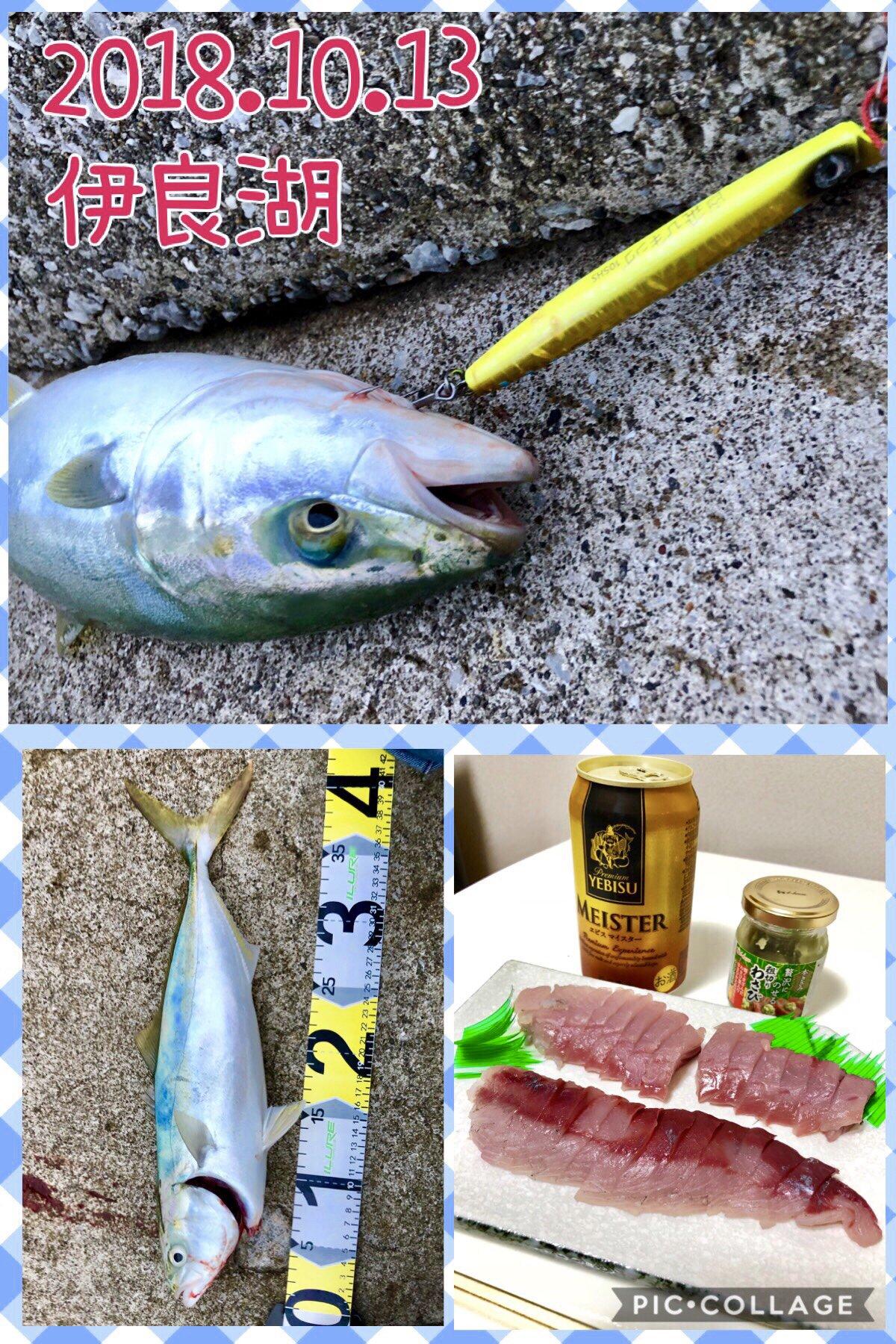 ackyさんの投稿画像,写っている魚はブリ