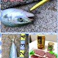 ackyさんの愛知県春日井市での釣果写真