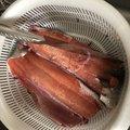 パルさんの北海道伊達市での釣果写真