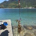 Hiroshi Aさんの山口県大島郡でのアオリイカの釣果写真