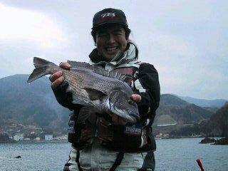 めじな研究所さんの投稿画像,写っている魚はクロダイ