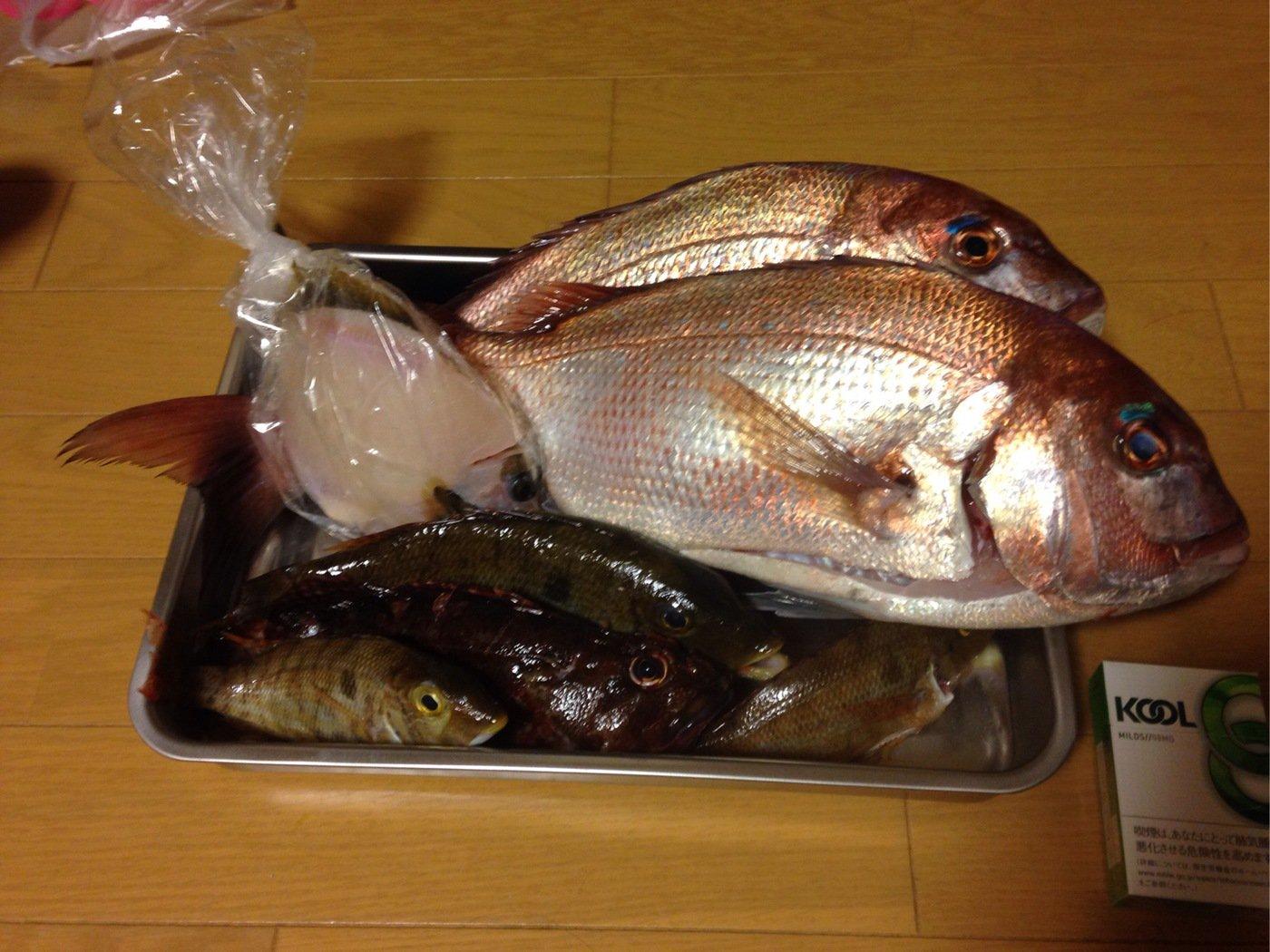 マッチさんの投稿画像,写っている魚はマダイ