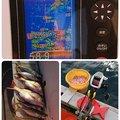 ☆*:真鯛中毒*:☆さんの新潟県三島郡での釣果写真