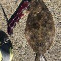 sho05050505さんの青森県東津軽郡での釣果写真