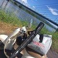 エンドウさんの佐賀県三養基郡での釣果写真