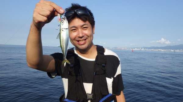 うずさんの投稿画像,写っている魚はゴマサバ