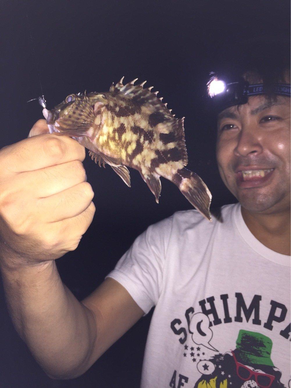 うずさんの投稿画像,写っている魚はカサゴ