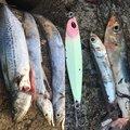 かいさんの神奈川県鎌倉市でのタチウオの釣果写真