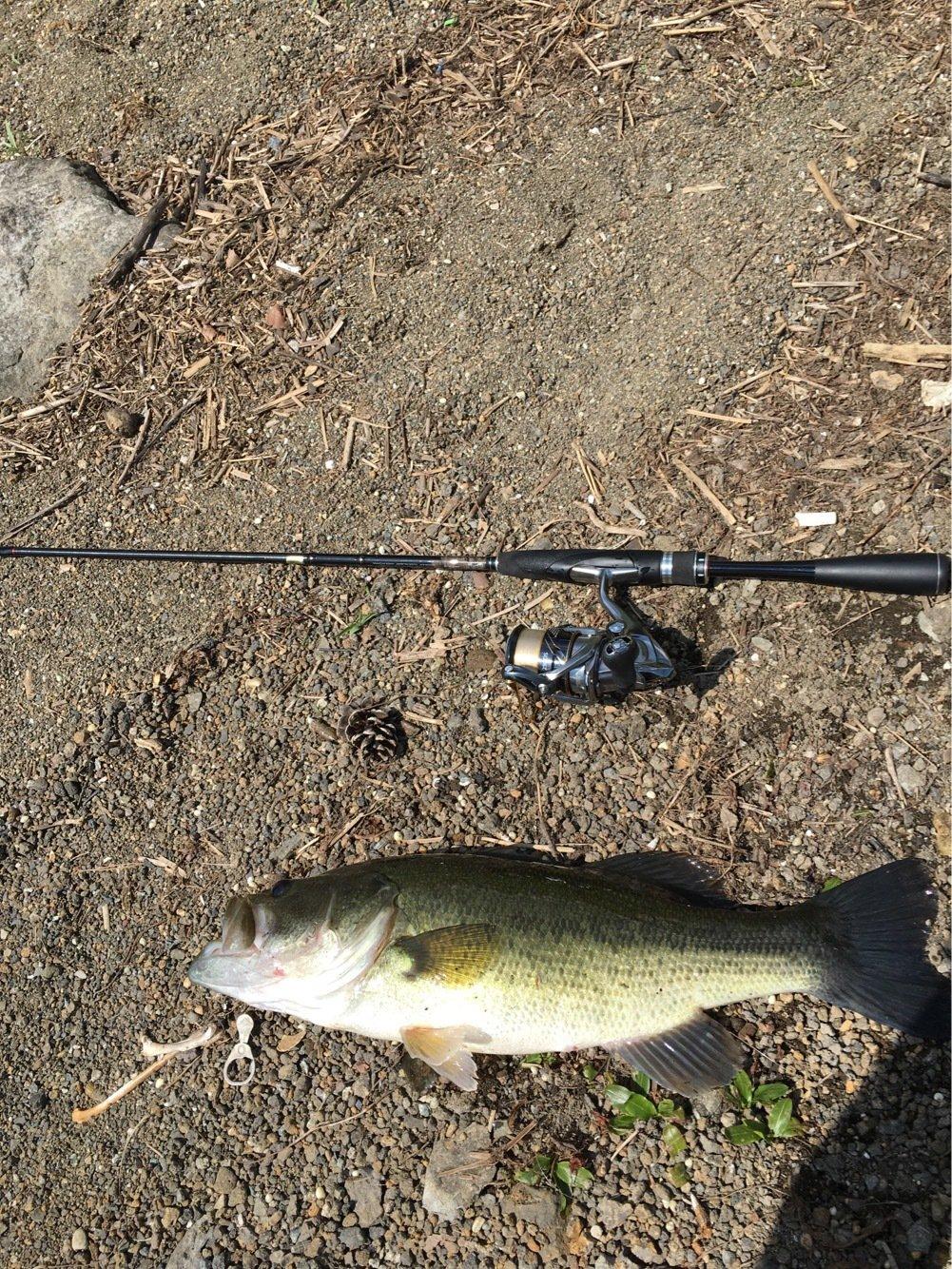 佐野さんの投稿画像,写っている魚はブラックバス