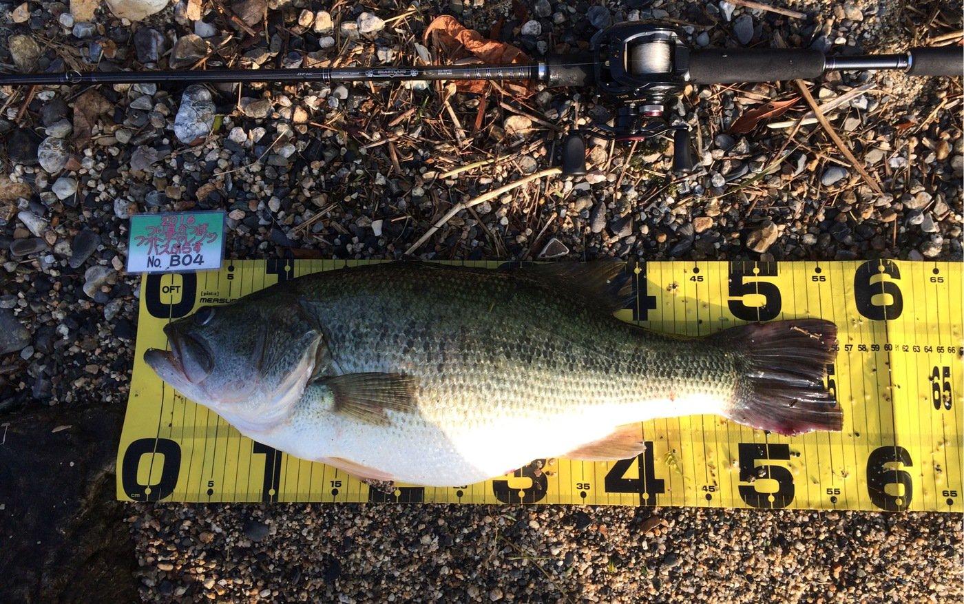 isao-fishingさんの投稿画像,写っている魚はブラックバス