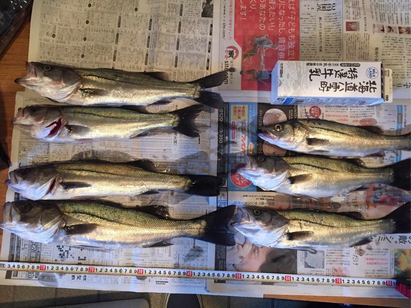タクヤさんの投稿画像,写っている魚はスズキ