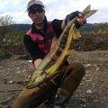 有頂天一号さんの山形県新庄市での釣果写真