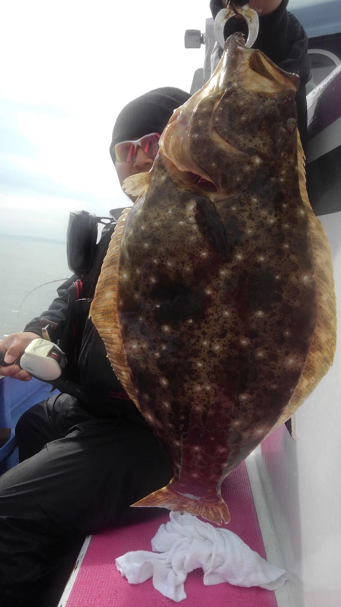 青さんさんの投稿画像,写っている魚はヒラメ,マハタ,サワラ,ブリ