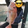 青汁ハイボールさんの岡山県備前市での釣果写真