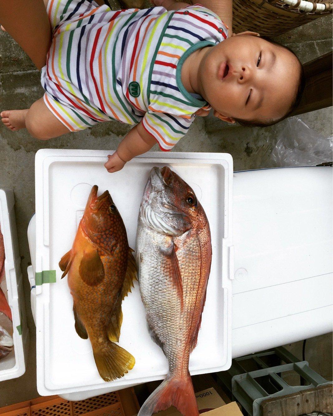 ナオさんの投稿画像,写っている魚は