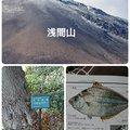 ☆*:真鯛中毒*:☆さんの長野県北佐久郡での釣果写真