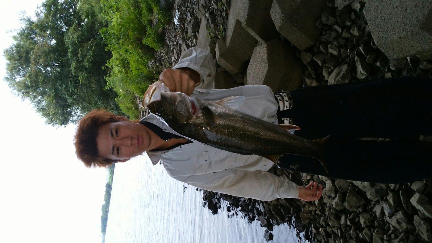 y34さんの投稿画像,写っている魚はスズキ