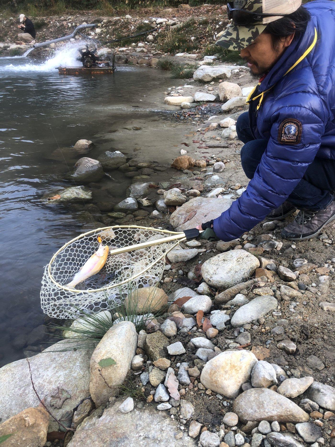 Soushi Oshiroさんの投稿画像,写っている魚はニジマス