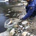 Soushi Oshiroさんの岐阜県高山市での釣果写真