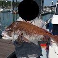 ken2さんの長崎県南島原市での釣果写真
