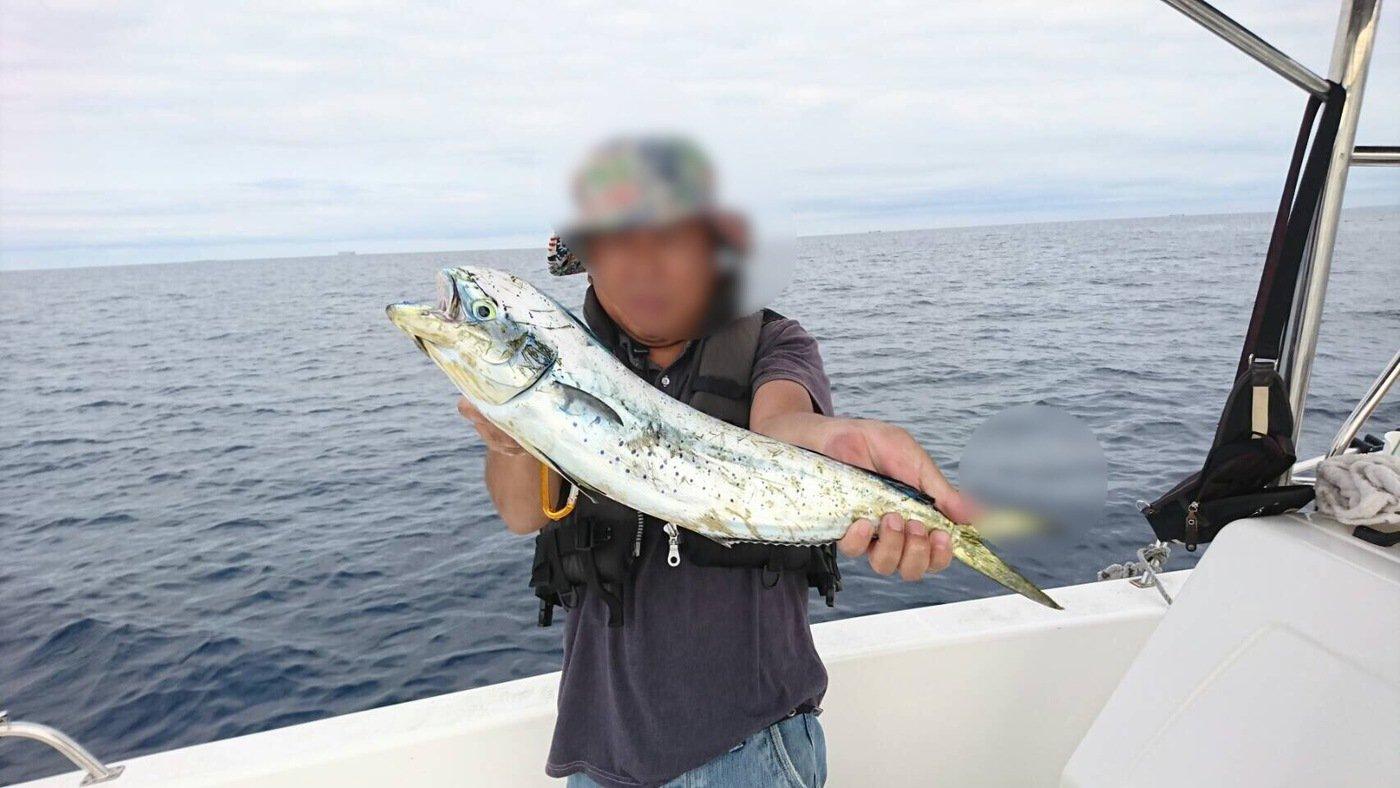 なみともさんの投稿画像,写っている魚はシイラ