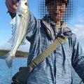 てるさんの千葉県習志野市での釣果写真