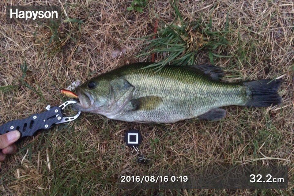 ヒデキさんの投稿画像,写っている魚はブラックバス