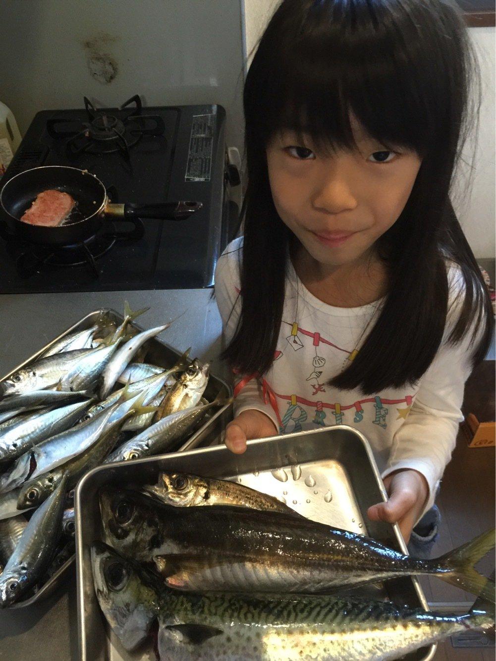 fish hunter 8号さんの投稿画像,写っている魚はアジ
