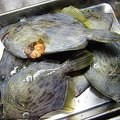 SHINGOさんのカワハギの釣果写真