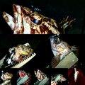 ナンチャンさんの香川県高松市でのタケノコメバルの釣果写真