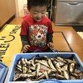 ちゃんたかさんの秋田県にかほ市での釣果写真