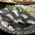 Kojimaさんの千葉県千葉市での釣果写真