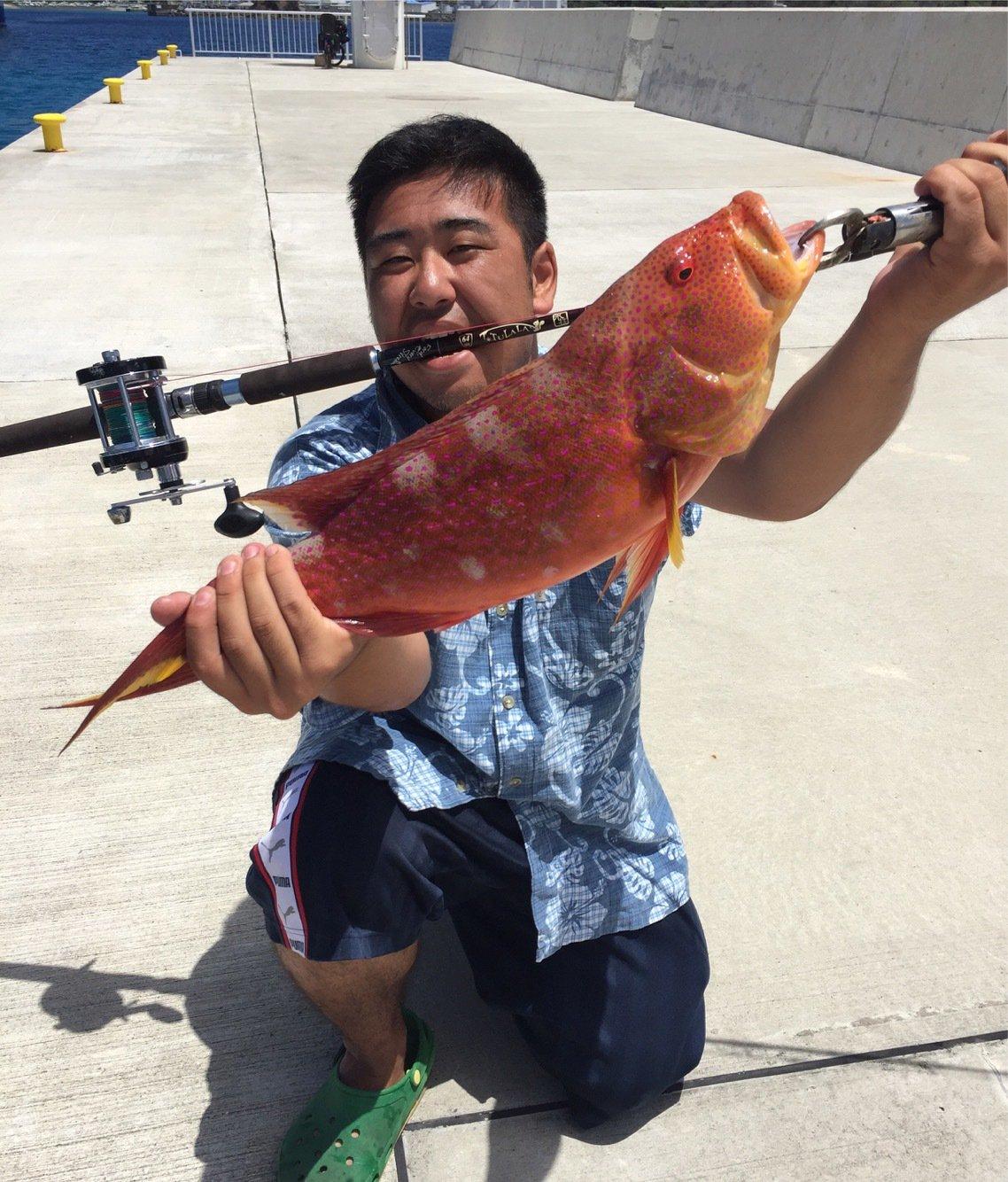 おいなりさんの投稿画像,写っている魚はバラハタ