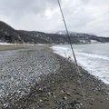 あぶっちさんの北海道島牧郡での釣果写真