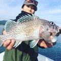 tatsukiさんの岩手県でのキツネメバルの釣果写真